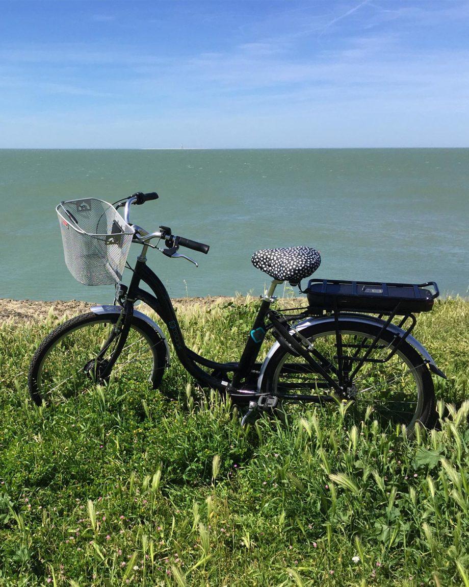 Vélo électrique Arcade Cycles E-colors Noir Nexus fabriqué en France