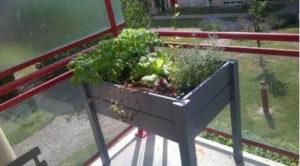 carré potager jardismart