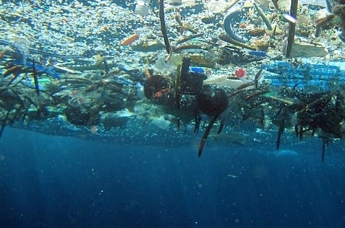 vêtements de sport écologiques pollution plastiques océan