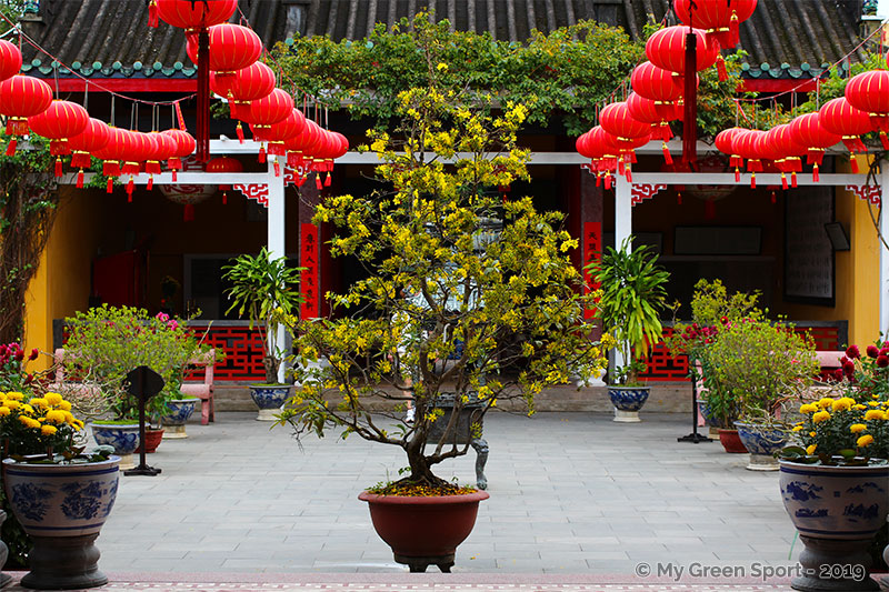 Voyager autrement Vietnam : Temple centre ville Hoi An